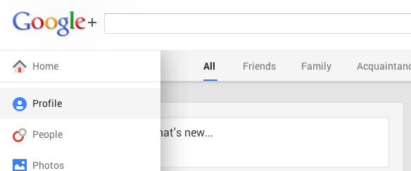 home-google-plus