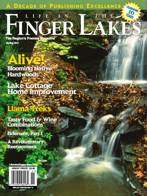 Eldercare articles for Life in the Finger Lakes Magazine