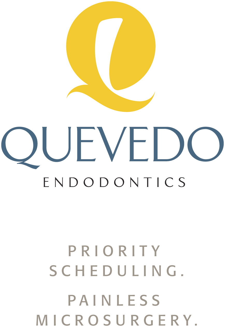 Quevedo Endodontics Name, Logo and Taglines