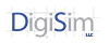 DigiSim LLC