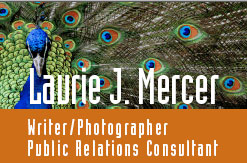 Laurie Mercer Public Relations