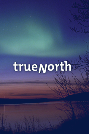 TrueNorth, Inc. Featured Graphic